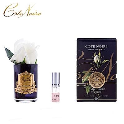 法國 CoteNoire 蔻特蘭 小朵象牙白玫瑰香氛花黑瓶