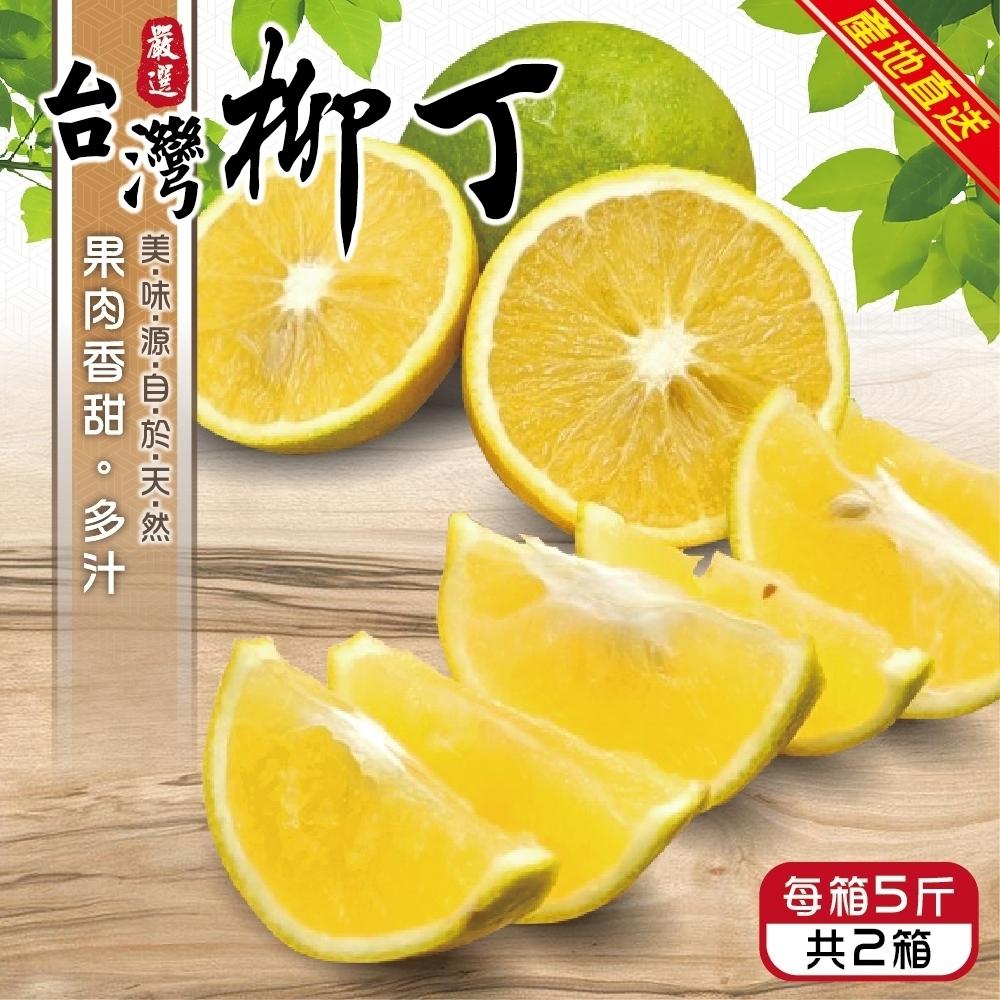 顧三頓-雲林古坑老欉香甜柳丁x2箱(每箱5斤)