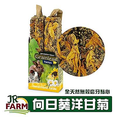 德國JR FARM 草本種籽棒-向日葵洋甘菊/寵物鼠兔全天然無穀磨牙點心140g-08156
