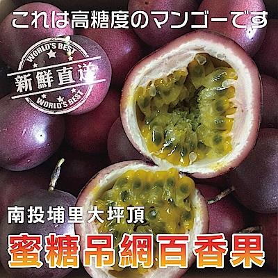 【天天果園】南投埔里大坪頂蜜糖吊網大顆百香果 x5斤