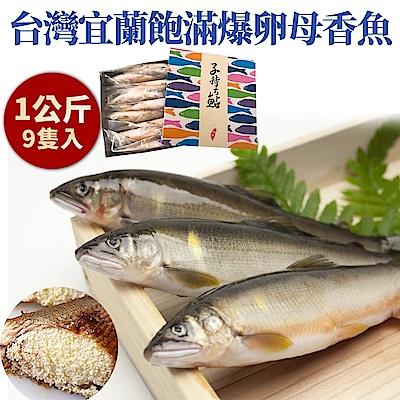 【海陸管家】台灣XXL帶卵母香魚禮盒(每盒9尾/共約1kg) x1盒