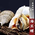 【屋告好甲】新鮮冷凍海王螺1公斤袋裝