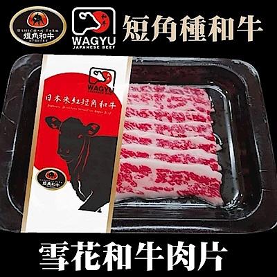 【海陸管家】日本短角和牛-雪花牛火鍋肉片1盒(每盒約100g)