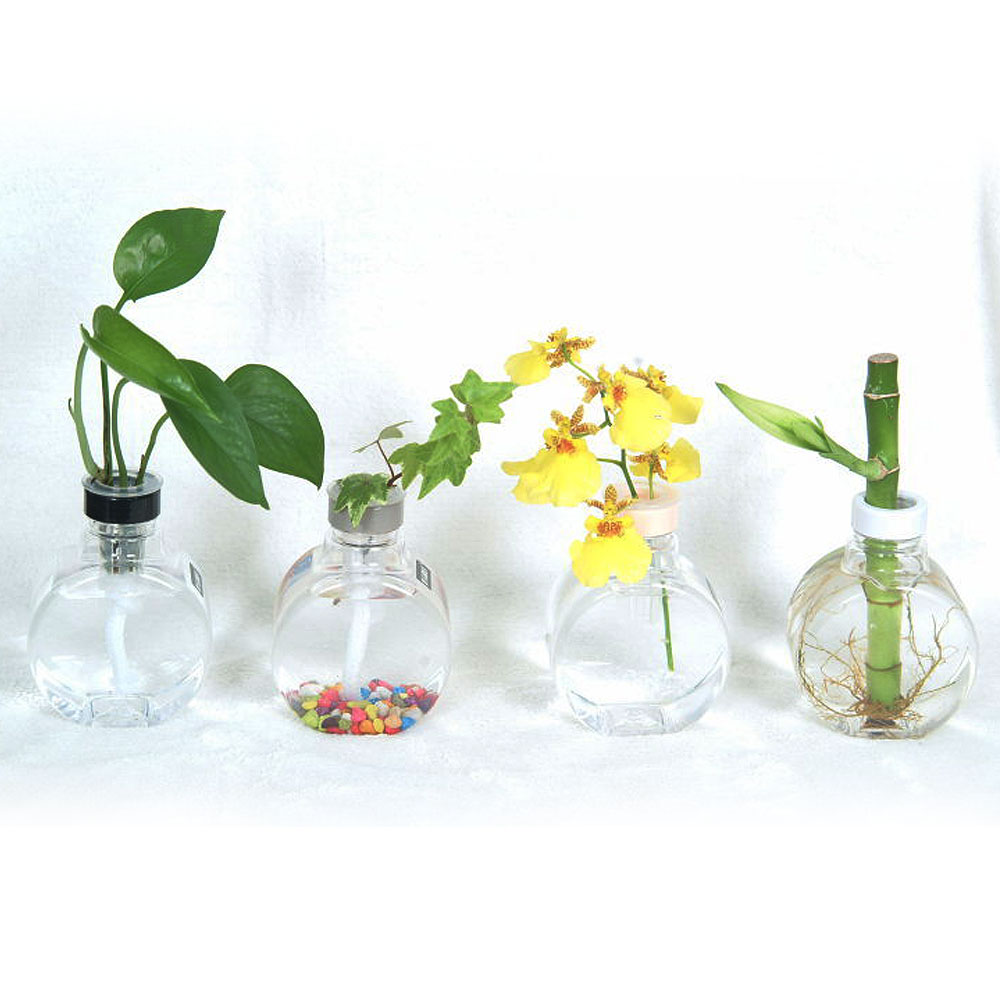 My Garden療癒植物容器 滿月瓶X3入-DY608