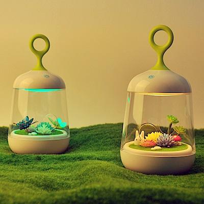 半島良品 超療癒微景觀植物小夜燈(兩款任選)
