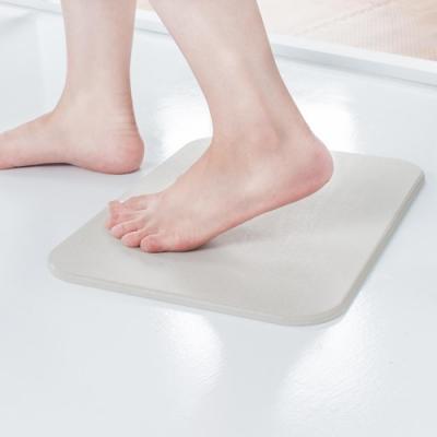 樂嫚妮 標準版珪藻土吸水速乾地墊/踏墊/腳墊 40X30cm