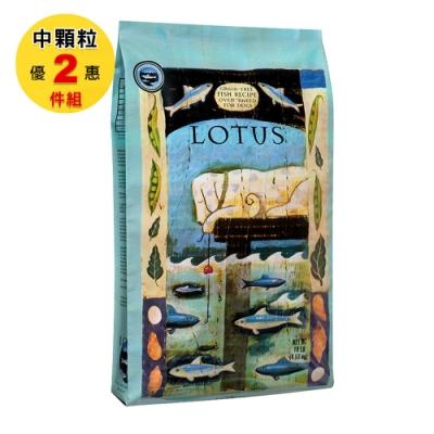 LOTUS 樂特斯 無穀海洋雙魚佐田野時蔬 全犬-中顆粒 10磅 兩件組