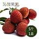 沁甜果園SSN‧高雄大樹玉荷包-粒果(5斤裝/盒) product thumbnail 1