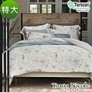 Tonia Nicole東妮寢飾 松林低語環保印染100%萊賽爾天絲被套床包組(特大)