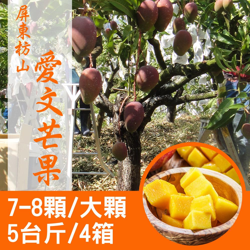 【產地直送】屏東枋山愛文芒果5台斤X4箱(7-8顆/箱)