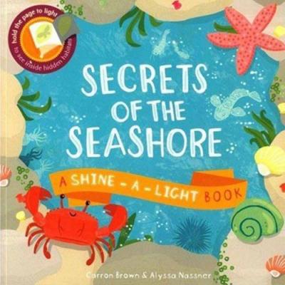 Secrets Of The Seashore 透光書:海岸篇平裝繪本