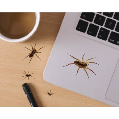 itaste小品味 BI173 整人專家開關壁貼-蜘蛛貼