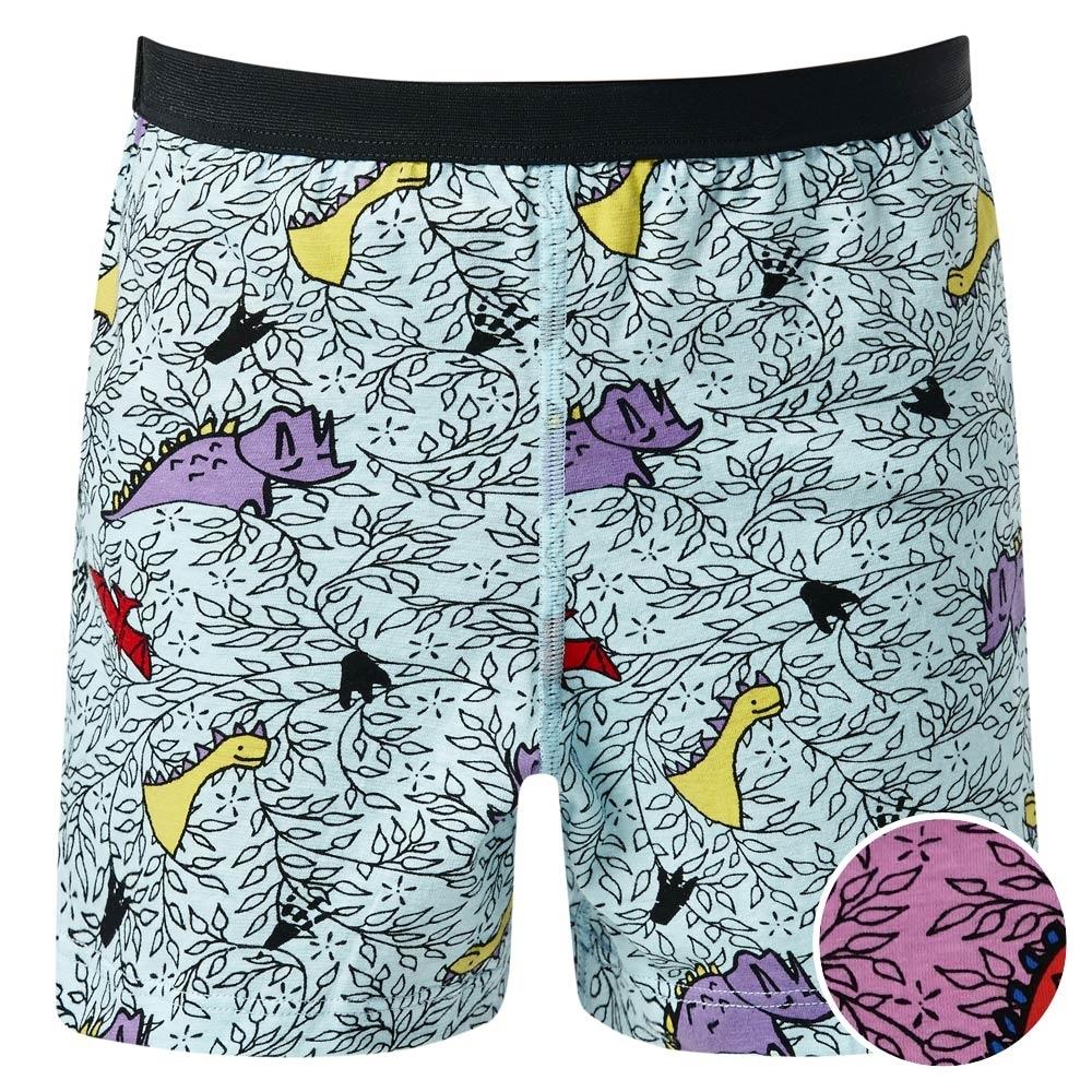 DADADO-恐龍 110-130 男童內褲(紫)