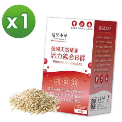 【達摩本草】專利天然藜麥綜合B群x1盒 (60粒/盒)《長效吸收、活力不斷電》
