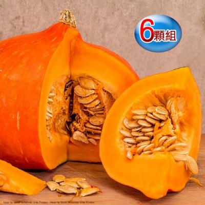 果之家 萬聖節特賣東昇南瓜6顆組合(單顆約1.5公斤)