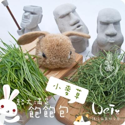 魏啥麻兔鼠寵物手工零食 - 乾燥小麥草 75g 飽飽包 寵物零食/點心