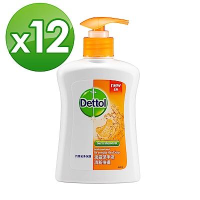 滴露Dettol-清新柑橘潔手液250mlX12