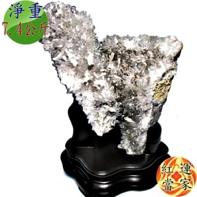 紅運當家 頂級 巴西天然白水晶簇(淨重 7.4公斤)