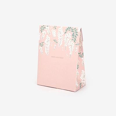 Dailylike 派對紙袋禮物盒V2(S)-04 祝好運
