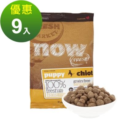 Now! 鮮肉無穀天然糧 幼犬配方 100克 九件組
