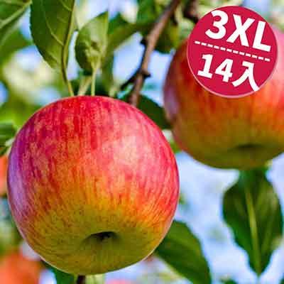 [甜露露]美國富士蘋果3XL 14顆入(5kg)
