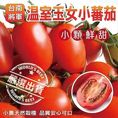 【天天果園】台南將軍溫室薄皮玉女小蕃茄(每盒約600g) x5盒