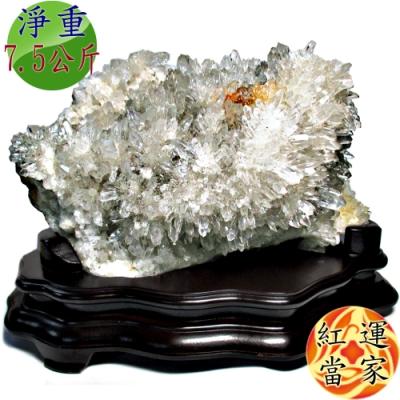 紅運當家 頂級 巴西天然白水晶簇(淨重7.5公斤)