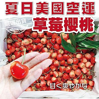 【天天果園】美國草莓白櫻桃9.5R原箱4kg