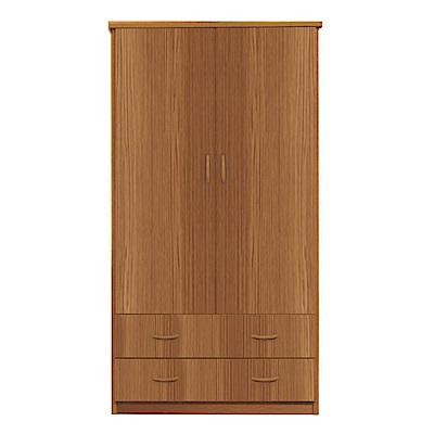 文創集 艾倫環保3尺塑鋼二門二抽衣櫃(二色)-91x61.5x180cm-免組
