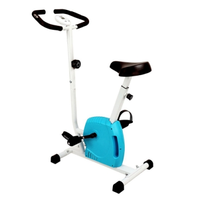 【X-BIKE 晨昌】立式磁控健身車_小蘋果 60300