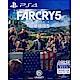 極地戰嚎-5-Far-Cry-5-PS4-中英文亞