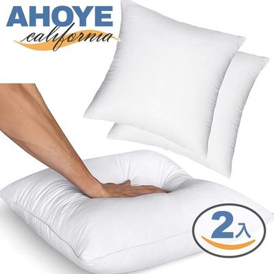 Ahoye 200G厚磅純白抱枕芯 (30*30cm-2入組) 沙發靠枕 枕頭