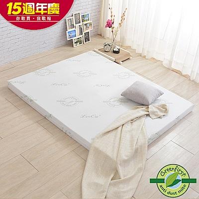 LooCa 旗艦款防蹣輕釋壓12cm記憶床墊-雙人5尺(特規-獨家)