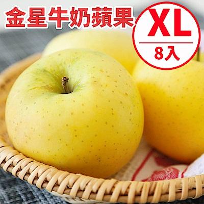 [甜露露]青森金星牛奶蘋果XL 8顆禮盒(2.4kg)