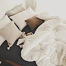 絲薇諾 MIT科技羽絲絨被-135×195cm