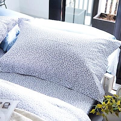OLIVIA Gloria 加大雙人床包歐式枕套三件組 300織精梳純棉