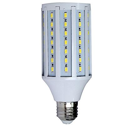 FotoOne標準色溫5500k 玉米造型LED攝影燈泡30w(一顆裝)