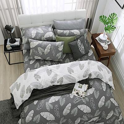鴻宇 100%精梳棉 舞葉知秋 單人床包枕套二件組