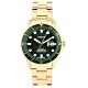 FOSSIL FB-01日期綠錶框金色不銹鋼腕錶42mm(FS5658) product thumbnail 1