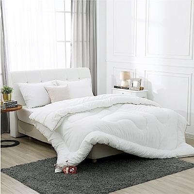 鴻宇 棉被 發熱纖維 超細纖維發熱被 雙人 台灣製