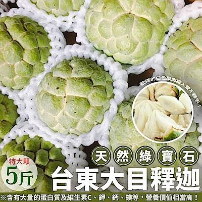 【天天果園】台東特大顆釋迦X5台斤(約5~6顆)