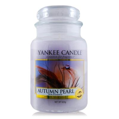YANKEE CANDLE香氛蠟燭-秋天珍珠Autumn Pearl 623g
