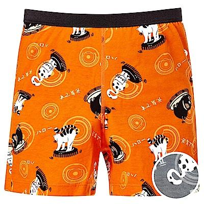 DADADO-哈囉 140-160 男童內褲(灰)品牌推薦