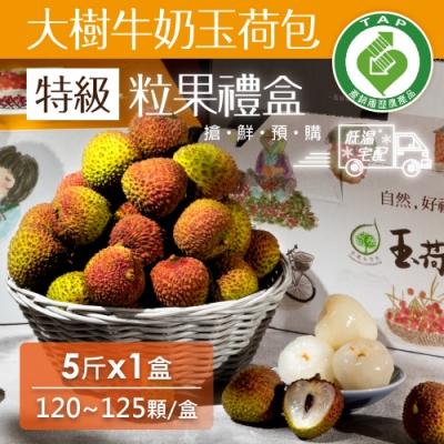 家購網嚴選 大樹牛奶玉荷包 產銷履歷 特級粒果禮盒5斤/盒(120~125顆/盒)