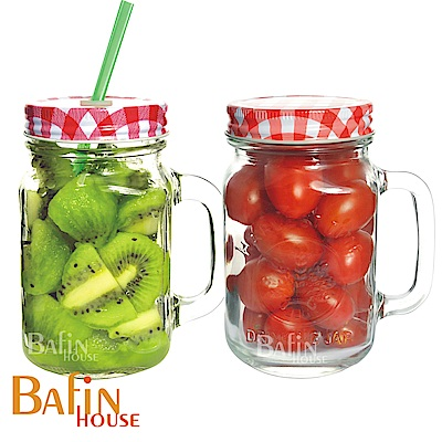 Bafin House syg吸管多用途玻璃把手杯2入組