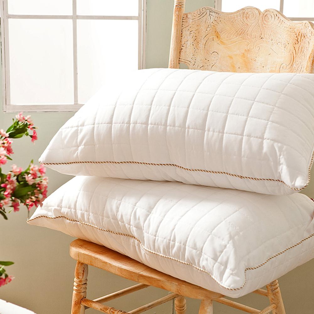 戀家小舖 / 枕頭  可水洗QQ枕-兩入組  防潑水表布車格  台灣製