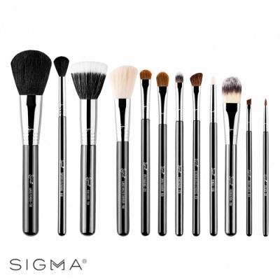 Sigma 刷具12件組-Essential Brush Kit