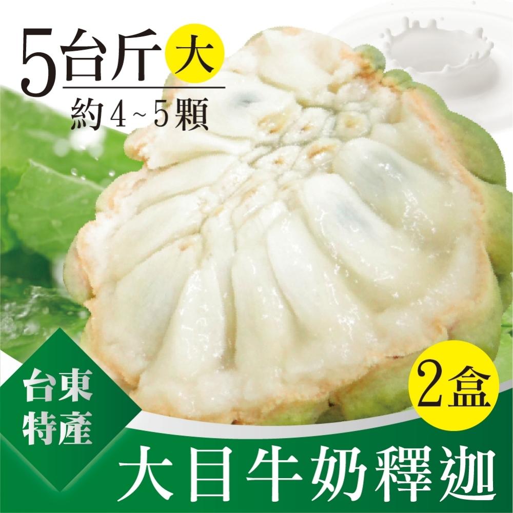 家購網嚴選 台東特級大目牛奶釋迦 (大) 5斤x2盒 (4-5顆/盒)