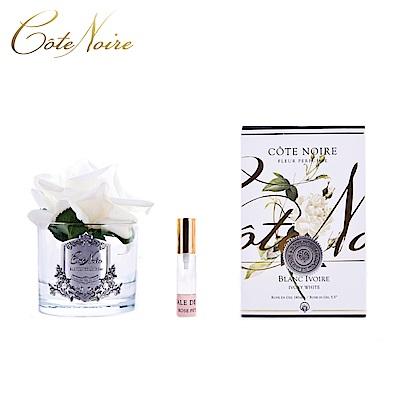 法國 CoteNoire 蔻特蘭 大朵象牙白玫瑰香氛花透明瓶