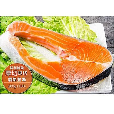 (滿額) 鮮綠生活家_智利產地急凍直送鮭魚(200±10%/片)